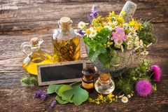 Tincture bottles and healing herbs Stock Photography
