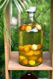 Tincture bottles of lemon, currant, berries and rowanberries. Herbal medicine. stock image