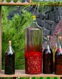 Tincture bottles of lemon, currant, berries and rowanberries. Herbal medicine. Spirits, wine and liqueur royalty free stock photos