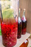 Tincture bottles of lemon, currant, berries and rowanberries. Herbal medicine. Spirits, wine and liqueur stock image