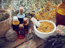 Tincture bottles, mortar of dried marigold flowers and herbs stock image