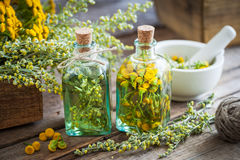 Tincture bottles of tansy and tarragon healthy herbs Stock Photos