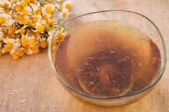 tincture chamomile Στοκ εικόνες με δικαίωμα ελεύθερης χρήσης