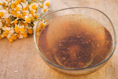 Tincture of chamomile Royalty Free Stock Images
