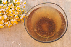 Tincture of chamomile. Cup broth tincture of chamomile Stock Photography