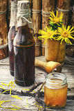 Tincture of elecampane Stock Photography