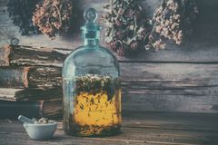 Tincture or potion bottle, old books, mortar and hanging bunches of dry healthy herbs. Herbal medicine. stock image