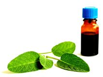 Tincture of sage Stock Photography