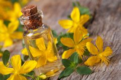 Tincture of St. John's wort in a glass bottle macro horizontal Royalty Free Stock Photo
