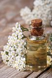 Tincture of yarrow close-up on a background of flowers Royalty Free Stock Photo