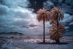 Tindaya landscape. Infrared photograph of a landscape of Fuerteventura, Spain Stock Photo
