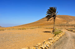 Tindaya Mountain in La Oliva, Fuerteventura, Canary Islands, Spa Stock Photos