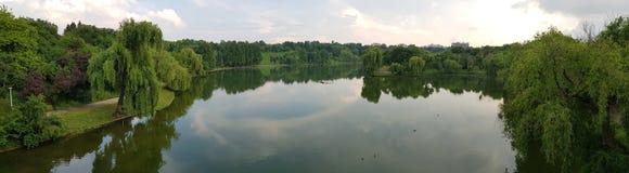 Tineretului jezioro Obrazy Royalty Free