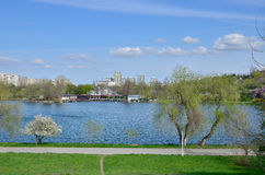 Tineretului Park in spring Stock Photography