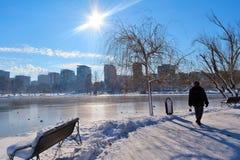 Tineretului Parkuje, Bucharest, Rumunia, zima czas zdjęcie royalty free