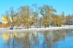 Tineretului Parkuje, Bucharest, Rumunia, zima czas fotografia stock