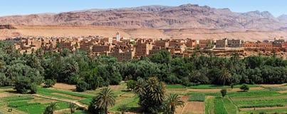 tinerhir оазиса Марокко Стоковые Фотографии RF
