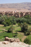 tinerhir оазиса Марокко Стоковое Фото