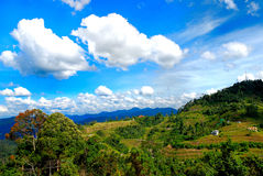 tinggi de la Malaisie de bukit Photo stock