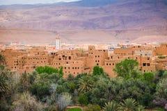 Tinghir市,摩洛哥特写镜头视图绿洲的 免版税库存图片