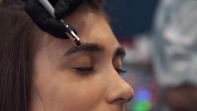 Tingidura da sobrancelha O mestre pinta as sobrancelhas com hena a uma menina bonita, pinta com uma escova no sal?o de beleza da video estoque