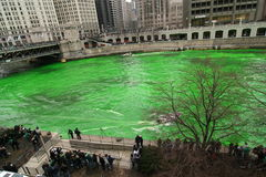 Tingindo o rio de Chicago no dia do St. Patrick Fotos de Stock