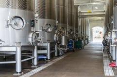 Grandi tini del vino Immagini Stock
