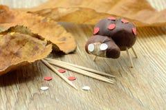 Tinker small ladybug figure made of chestnut and teeth sticks. Tinker small ladybug figure made of chestnut and teeth sticks Stock Images