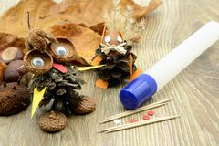 Tinker small owl and squirrel figure made of pine cone and acorn. Parts. glue and tooth sticks aside Royalty Free Stock Images