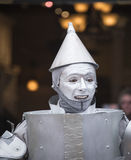 The Tinman Stock Photos