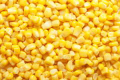 Tinned corn background Royalty Free Stock Image