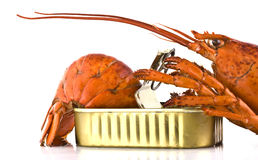 Tinned lobster Stock Image