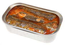 Tinned Sardines Royalty Free Stock Image