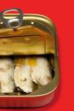Tinned sardines Royalty Free Stock Photos