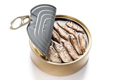 Tinned Sardines. Open can of tinned sardines on white background Stock Image