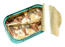 Tinned Sardines Royalty Free Stock Image