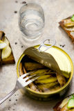 Tinned sprats Stock Photos