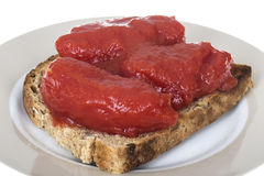 Tinned Tomatoes served on Top of Fresh Granary Toast Royalty Free Stock Photography