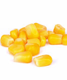 Tinned whole kernel corn Royalty Free Stock Photos