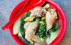 Tinolang Manok (sopa de pollo con el jengibre y la cebolla fotografía de archivo