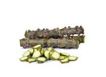 Tinospora crispa L. Hook. f. & Thomson herb Royalty Free Stock Photography