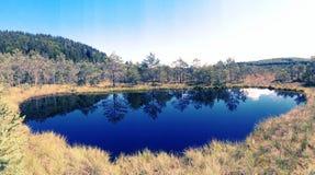 Tinovul Mohos jezioro Zdjęcia Royalty Free
