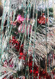 Tinsel on a New Year tree. Tinsel and other jewelry on the New Year tree Stock Image