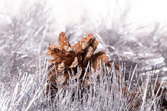Tinsel pine cone Royalty Free Stock Photography
