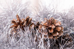 Tinsel pine cone Stock Images