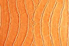 Tint Orange Crocodile Skin Texture Royalty Free Stock Images