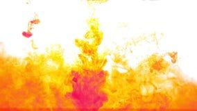 Tinta amarela e vermelha abstrata na água no fundo branco filme
