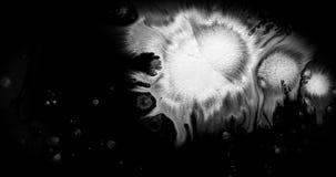 Tinta blanca de la brocha de la forma abstracta del movimiento que salpica fluir y lavarse en el fondo negro, chapoteo de la salp almacen de metraje de vídeo