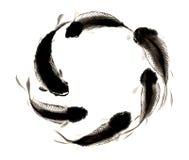 Tinta-carpa pintada a mano decorativa magnífica distinguida tradicional china Foto de archivo libre de regalías