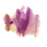 A tinta chapinha a textura macro da mancha do ponto da aquarela violeta amarela líquida da tintura do watercolour isolada no fund Fotos de Stock